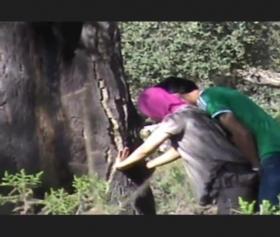 Esra ormanda gizli seks yapıyor, arkadaşı kayıtta
