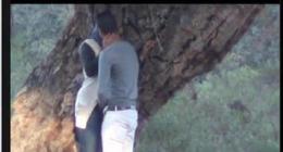 Türbanlı melda sevgilisiyle ağaç altında gizli çekim türk pornosu çekmiş